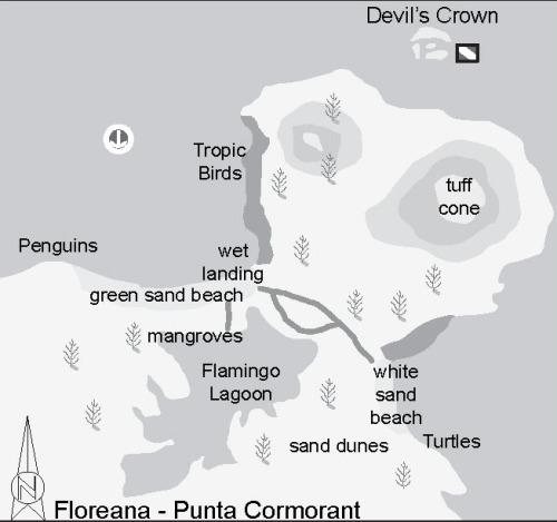 Floreana - Punta Cormorant - Devil's Crown