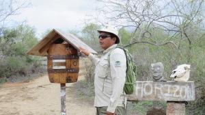 Galapagos - Février 2015 (1705)