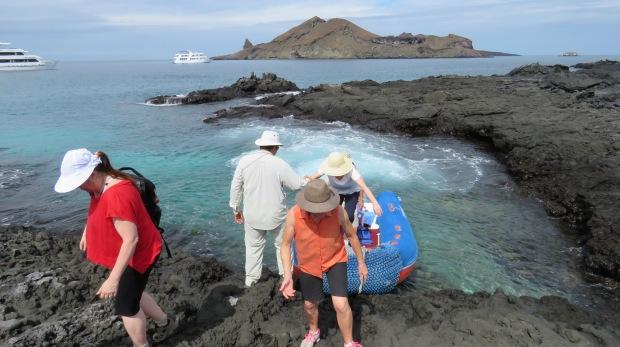 Galapagos - Février 2015 (203)