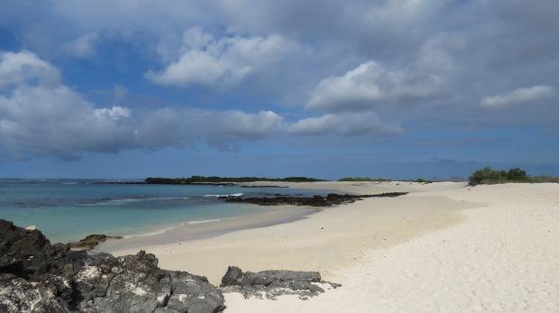 Galapagos - Février 2015 - Las Bachas (9)